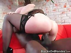 Cock loving white milf Nina Hartley is fond of fucking tough black fellow.